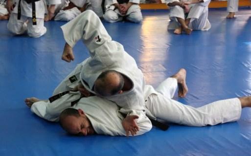 ju-jitsu2