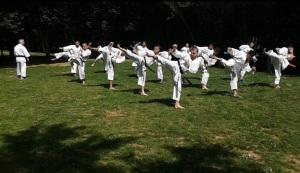 karate 3