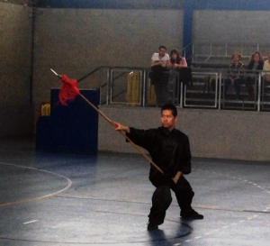 kung fu 4