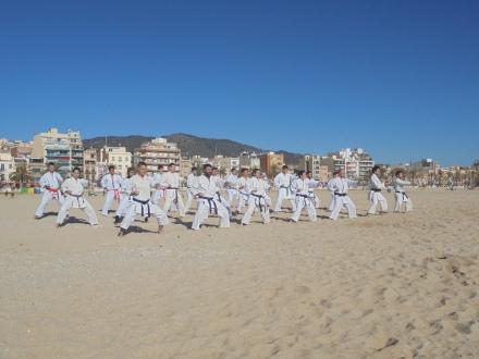 karate playa 1