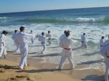 karate playa 2