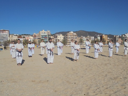 karate playa